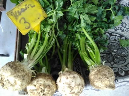 The noble, knobbly celeriac