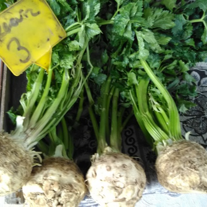 The noble, knobbly celeriac